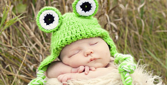 baby frog