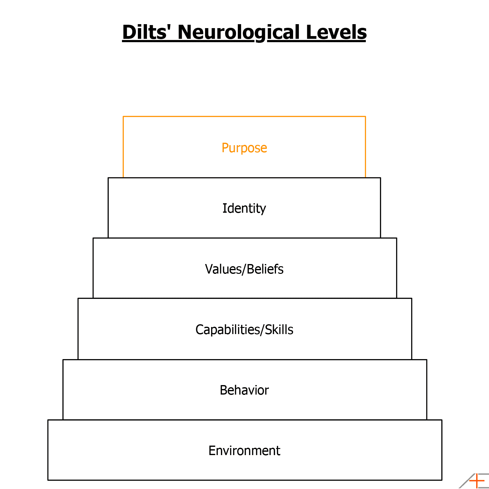 dilts-neurological-levels